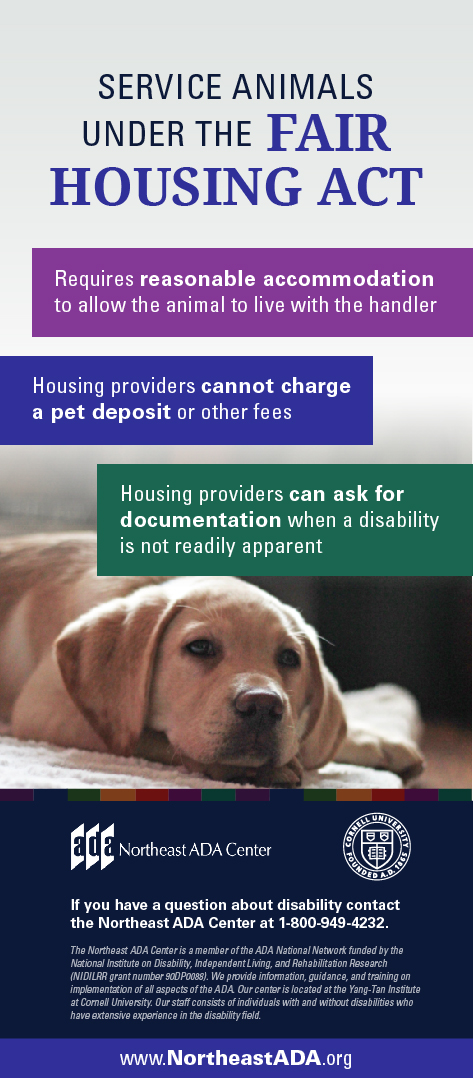 Infographic titled 'Service Animals Under the Fair Housing Act' featuring a dog lying on a dog bed and several text boxes.  Service Animals Under the Fair Housing Act: Requires reasonable accommodation to allow the animal to live with the handler.  Housing providers cannot charge a pet deposit or other fees. Housing providers can ask for documentation when a disability is not readily apparent.  If you have any questions about the Americans with Disabilities Act, contact us at 1-800-949-4232