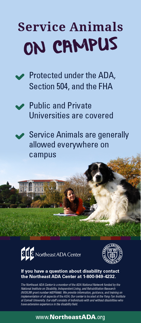 Infographic titled 'Service Animals on Campus' featuring a student sitting on a college quad with her dog.  Service Animals on Campus: Protected under the ADA, Section 504, and the FHA Public and Private Universities are covered Service Animals are allowed everywhere on campus  If you have any questions about the Americans with Disabilities Act, contact us at 1-800-949-4232