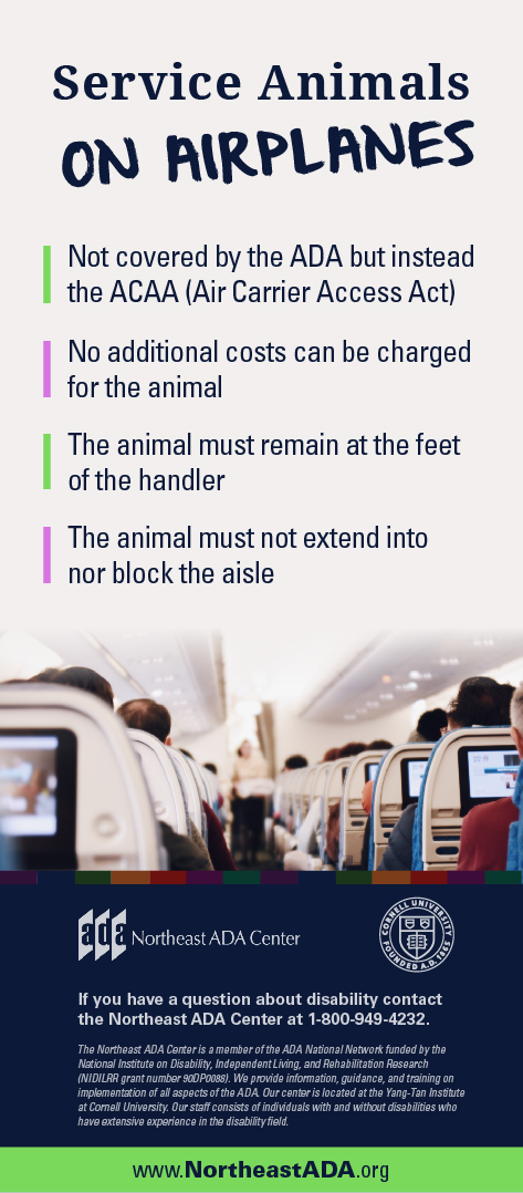 Infographic titled 'Service Animals on Airplanes' featuring a photo of an airline cabin full of passengers.  Service and Emotional Support Animals on Airplanes: Not covered by the ADA but instead the ACAA (Air Carrier Access Act). No additional costs can be charged for the animal. The animal must remain at the feet of the handler. The animal must not extend into nor block the aisle.  If you have any questions about the Americans with Disabilities Act, contact us at 1-800-949-4232