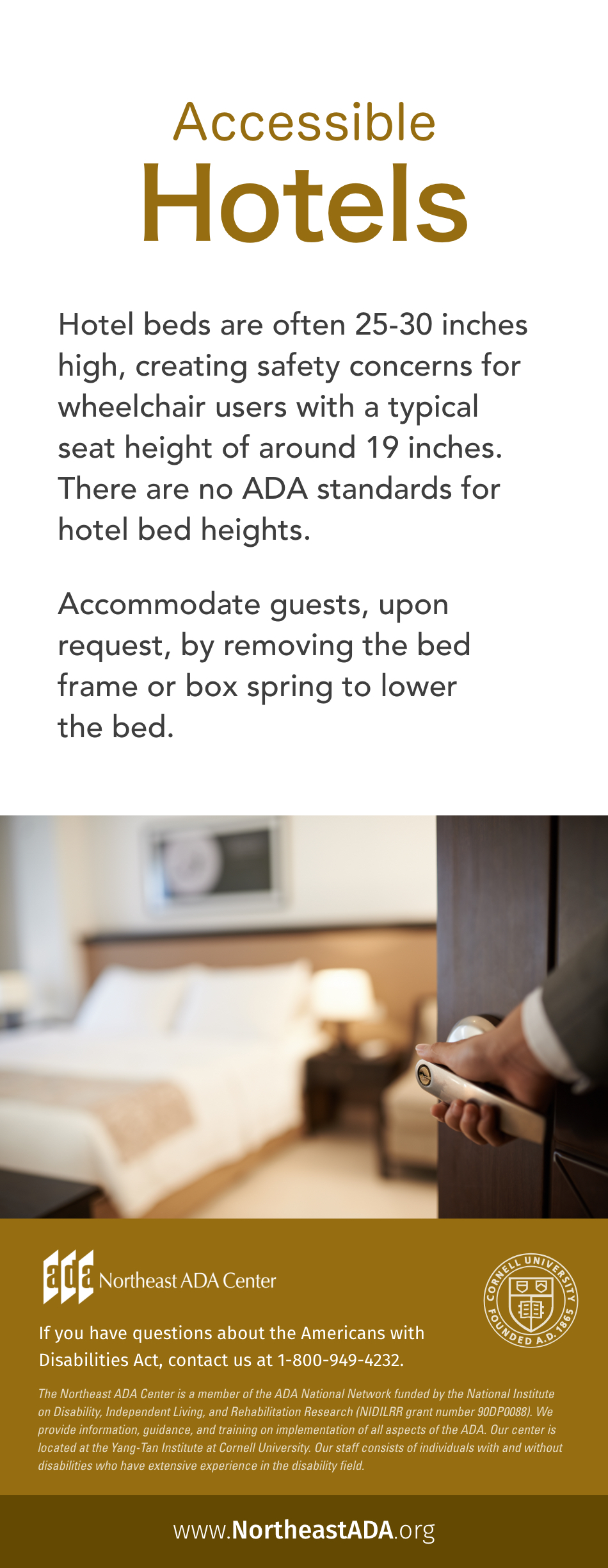 Infographic titled 'Accessible hotels':