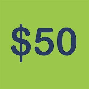 $50 Arcade Card-300 Credits