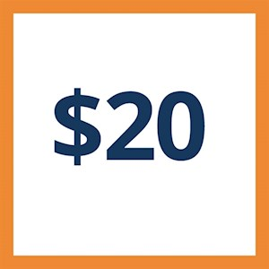 $20 Arcade Card-100 Credits