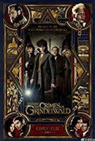 At the end of the first film, the powerful dark wizard Gellert Grindelwald was captured by MACUSA (Magical Congress of the United States of America), with the help of Newt Scamander. But, making good on his threat, Grindelwald escaped custody again and has set about gathering followers, most unsuspecting of his true agenda: to raise pure-blood wizards and witches up to rule over all non-magical beings.