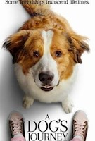 Some friendships transcend lifetimes. In A Dog's Journey, the sequel to the heartwarming global hit A Dog's Purpose, beloved dog Bailey finds his new destiny and forms an unbreakable bond that will lead him, and the people he loves, to places they never imagined.