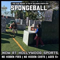 Spongeball