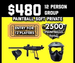 $480 Special