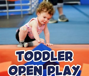 Toddler Open Play