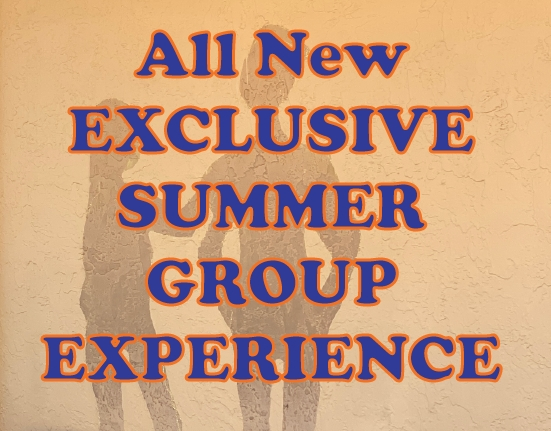 Exclusive Group Experience