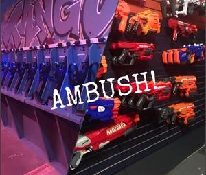 Dual Combat Ambush Package