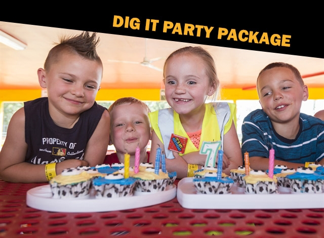 The DIG IT Party Package