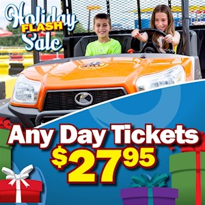 HOLIDAY SALE ANY DAY TICKET