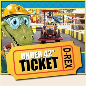 """2020 Day Ticket UNDER 42"""" WEB"""