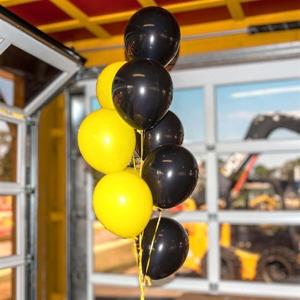 Ballon Bouquet (10 Ballons)