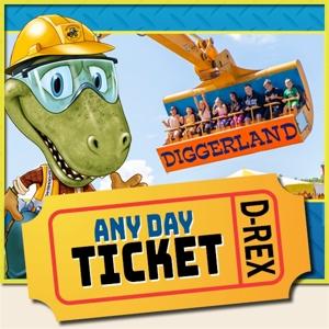 Any Day Ticket