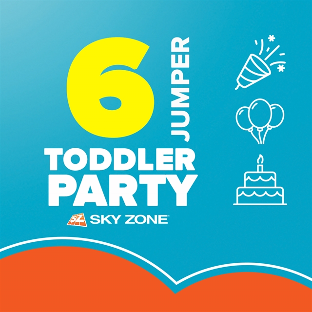 Toddler Mini Jump Party
