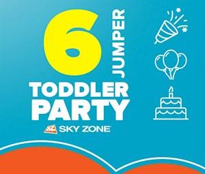 Toddler Mini Jump Party