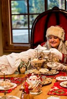 Tea Party w/ Mrs. Claus Reservations must be Purchased in Addition to a Holiday Admission Ticket or Annual Pass - Seats are Limited, Times are at 1:00pm & 3:00pm  Available Dates: Thursday - Sunday (Starting 11/16/17)