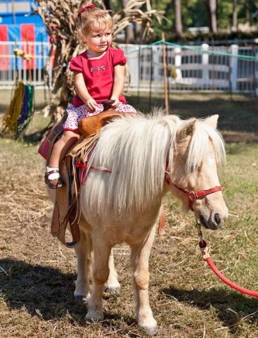 Pony Ride Deal (5)