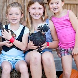 Petting Farm Family 4 Season Passes