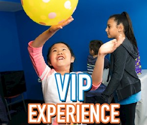 VIP Experience Party