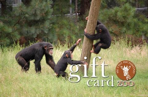 $60 MRZ Gift Card