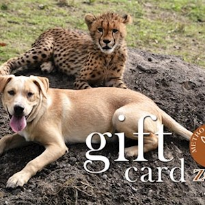 $50 MRZ Gift Card
