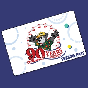 All Access Pass 2019