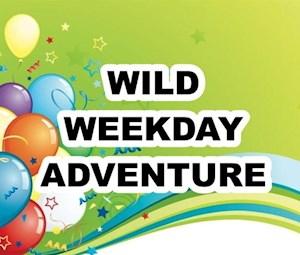 Wild Weekday Party Package
