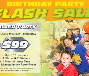 Silver Party Flash Sale