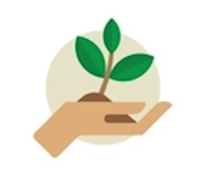 Adopt a Plant (7-9yrs)