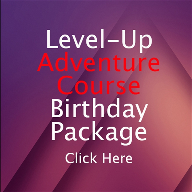 Level-Up AC Party