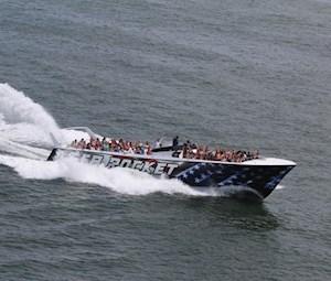 Sea Rocket