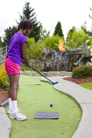 Mini Golf Party $209