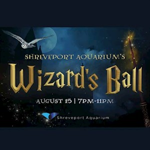 Wizards Ball