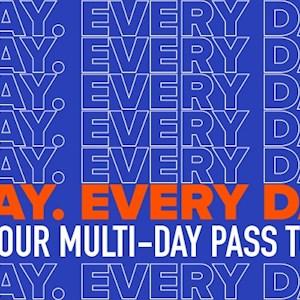 90 Day Pass