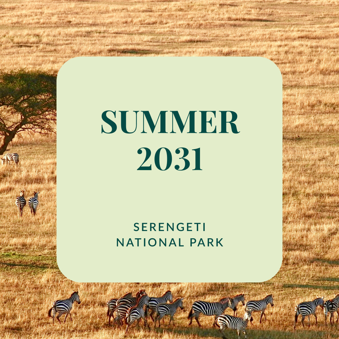 """Text that reads, """"Summer 2031. Serengeti National Park."""" in front of a photo of a savanna with Zebra roaming."""