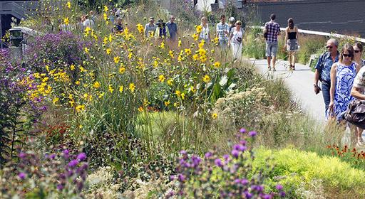 1428349951 512x280 high line garden tour spring bulbs blooms list image