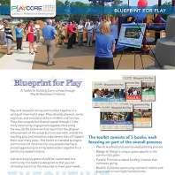 Blueprint For Play Executive Summary Cta