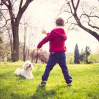 Child And Dog Playing At Park