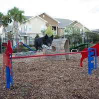Dog Park Project Cta