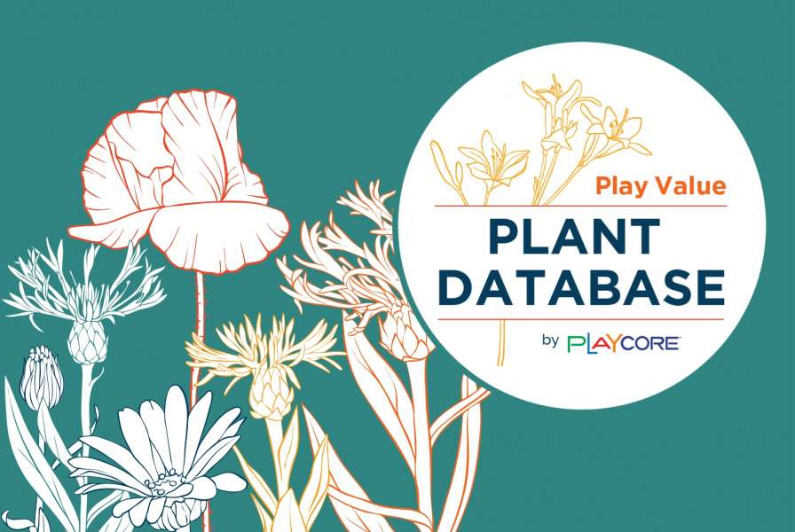 Play Value Plant Database