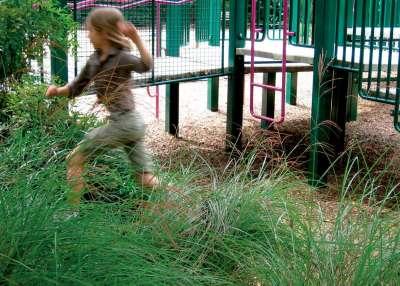 5 M  Running Kid