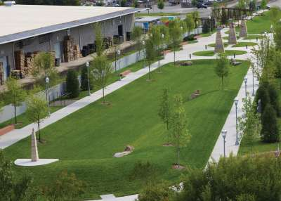 Outdoor Fitness Case Study Main Terrain Art Park