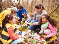 Bring Learning Outdoors Activities