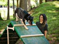 Clark Park Bark Park Renee