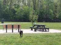 Pizzurro Park Gahanna Oh