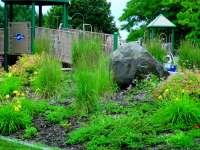 Playground Planting Principles