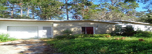 New Purchase Single-Family Home Picture