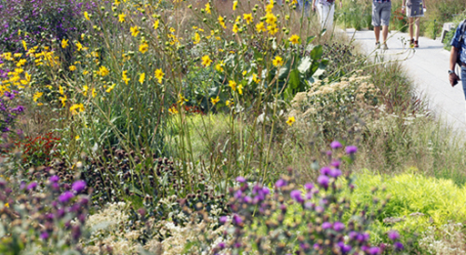 garden tour blooms high line