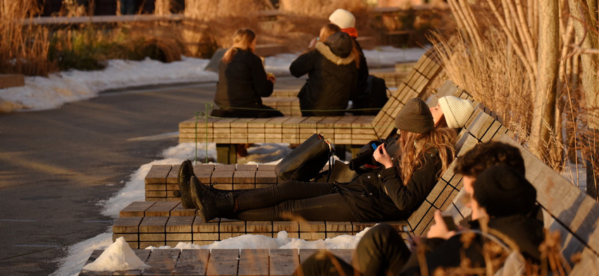 Photo of the week winter sunbathing list image